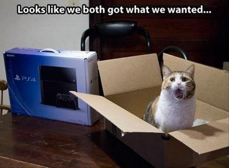 "27 Funny Animal Memes - ""Looks like we both got what we wanted."""