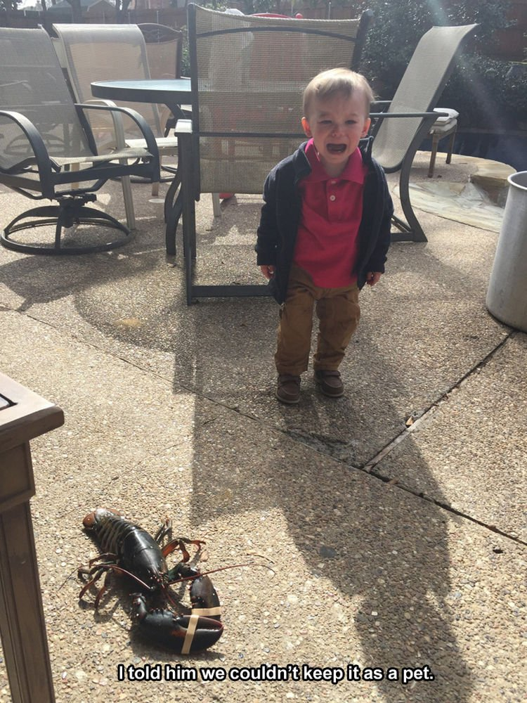 37 Photos of Kids Losing It - I told him we couldn