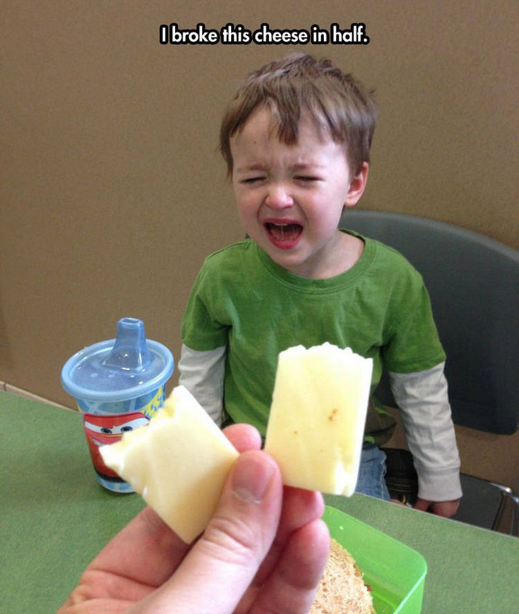 37 Photos of Kids Losing It - I broke this cheese in half.