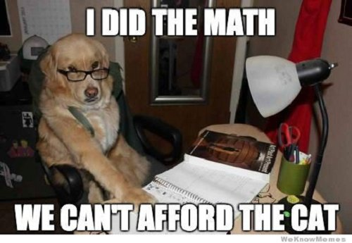 Image of dog with glasses saying I did the math we can