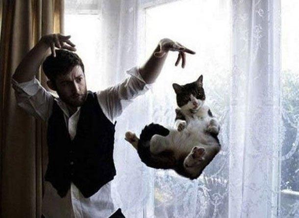 floatingcat