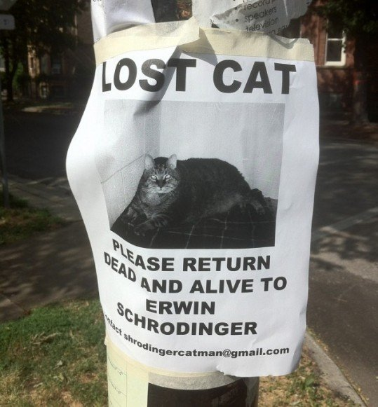 hilarious-street-signs-2