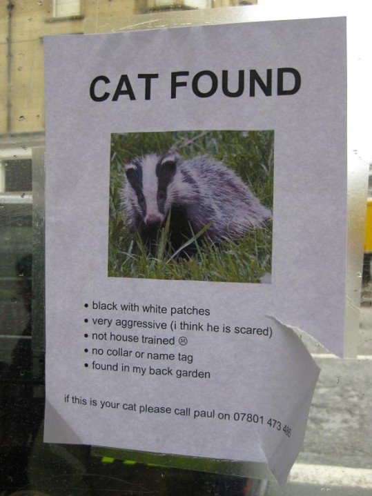 hilarious-street-signs-9