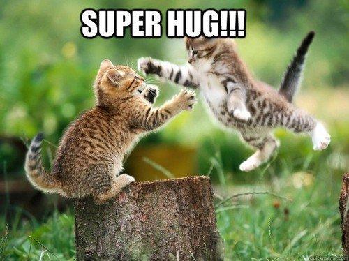 super hug_tn