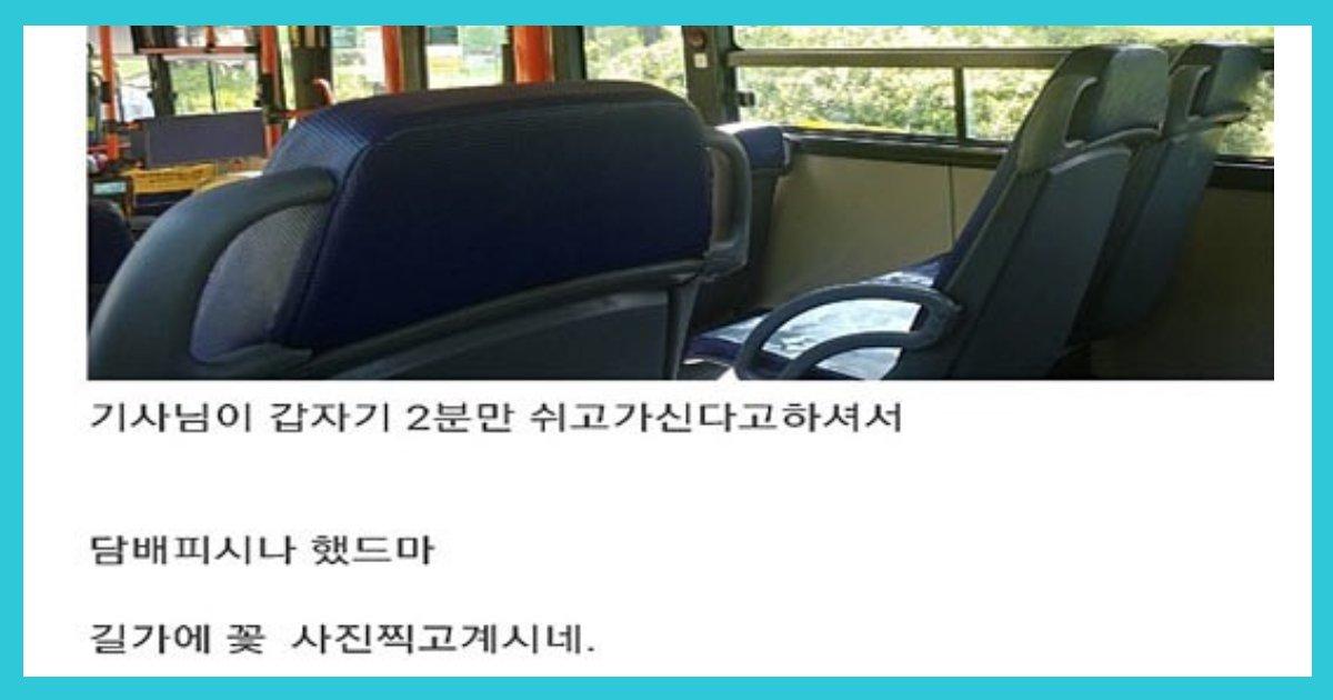 article thumbnail121102.png?resize=412,232 - 귀여운 버스 기사님들 일화 모음