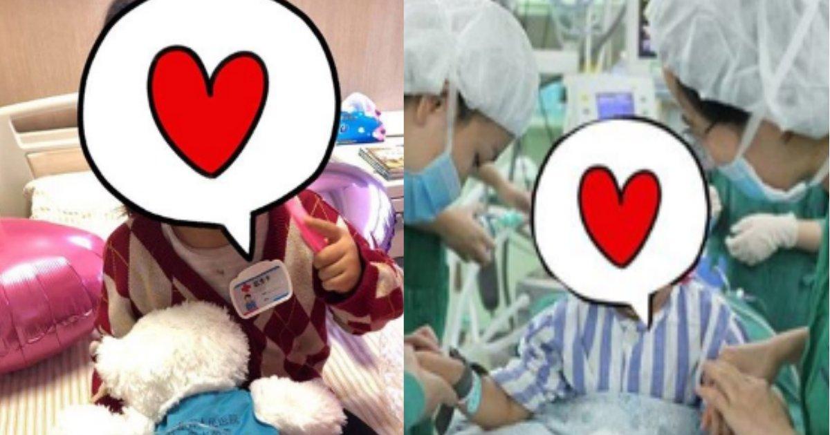 cancer.png?resize=1200,630 - 子供も乳がんにかかる?3歳で乳がんにかかった少女が話題に