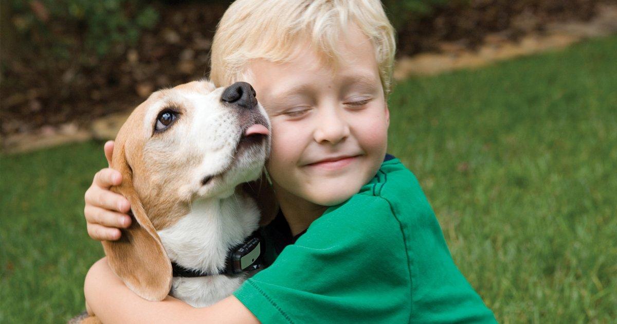 capa1 16.jpg?resize=1200,630 - Seleção de imagens mostra por que toda criança precisa de um cachorro