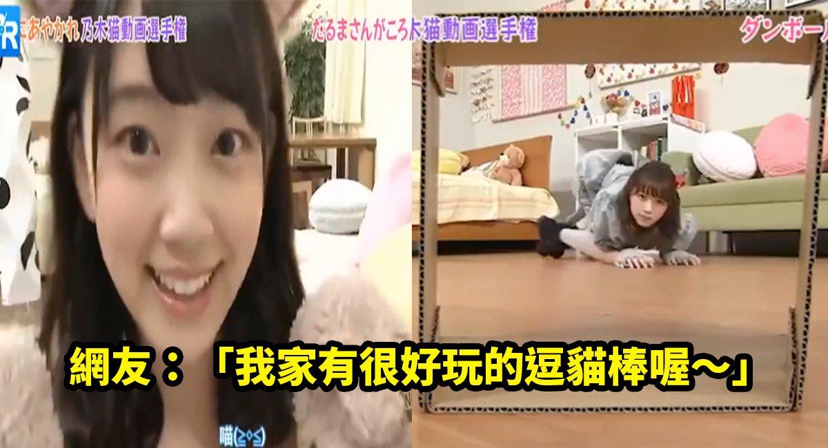 e4babae8a39de8b293.jpg?resize=1200,630 - 日本節目找來一群美少女扮成貓咪,屁股翹高高鑽進去讓人大喊凍末條啊~