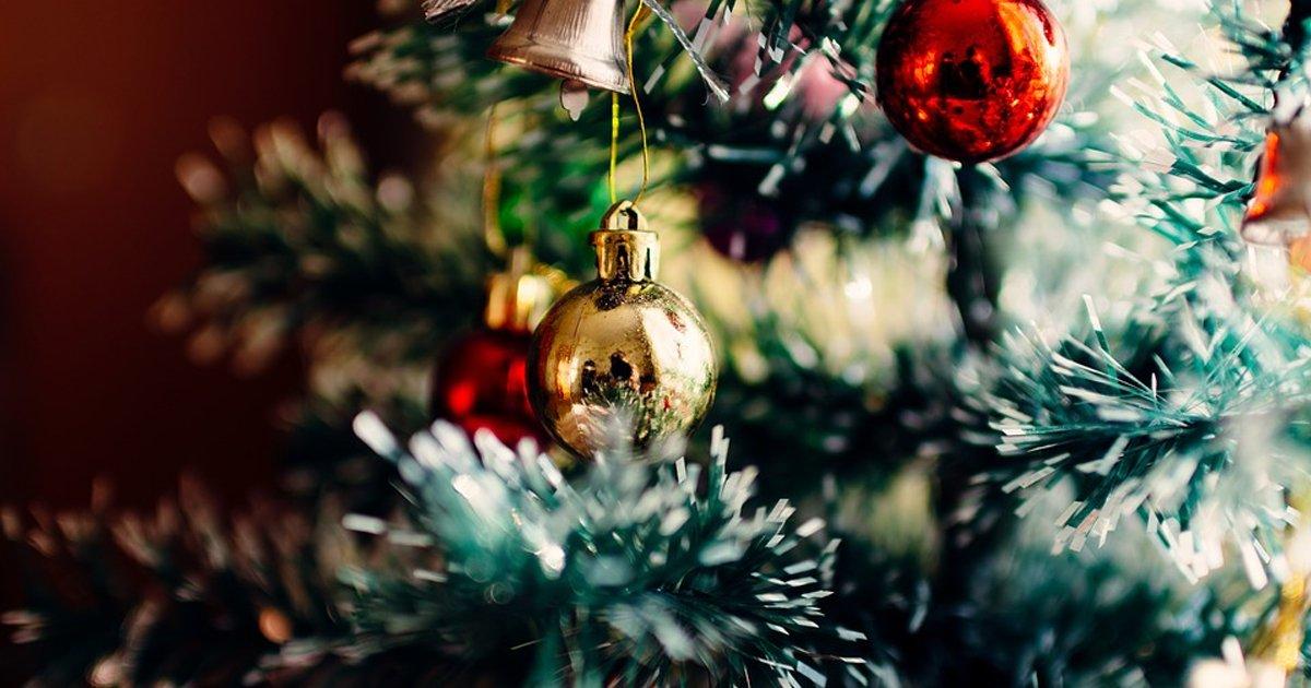 ed81aceba6acec8aa4eba788ec8aa4 ed8ab8eba6ac.jpg?resize=412,232 - '크리스마스 트리'에 숨어있는 '심각한 문제'의 정체