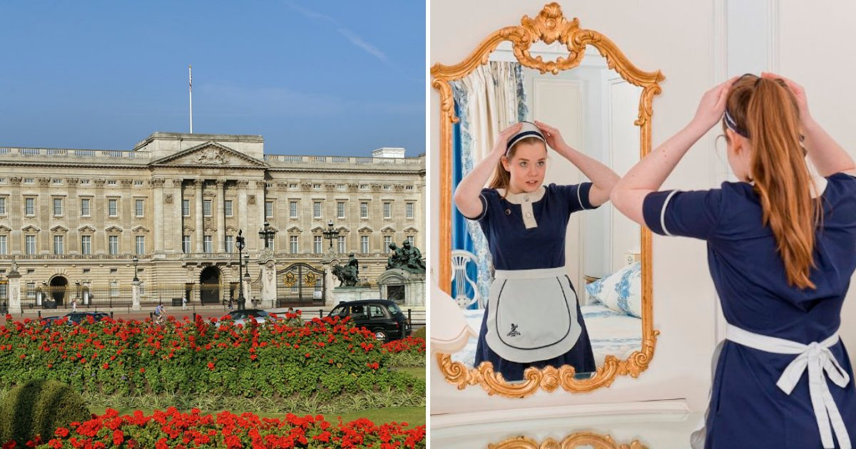 housekeeper3.png?resize=1200,630 - Looking For Work? The Queen Needs A Buckingham Palace Cleaner On Salary Of $20,000 Per Year Plus Amazing Benefits