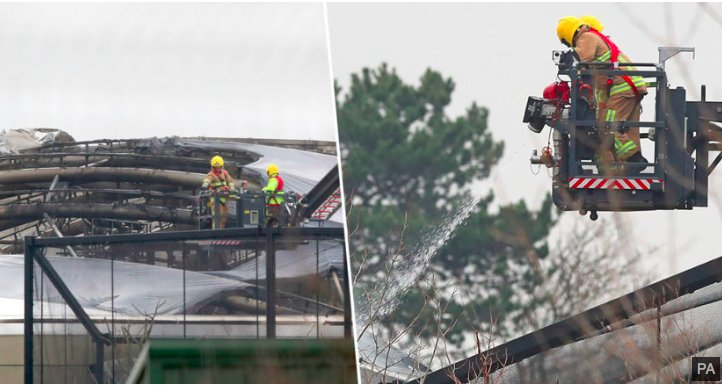 img 5c1b7d93e3fce.png?resize=1200,630 - Des animaux ont été tués dans un énorme incendie au zoo de Chester