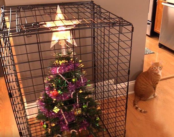 protect christmas tree 008.jpg?resize=1200,630 - Inspirez-vous de ces 19 idées pour protéger votre sapin de Noël de votre animal adoré