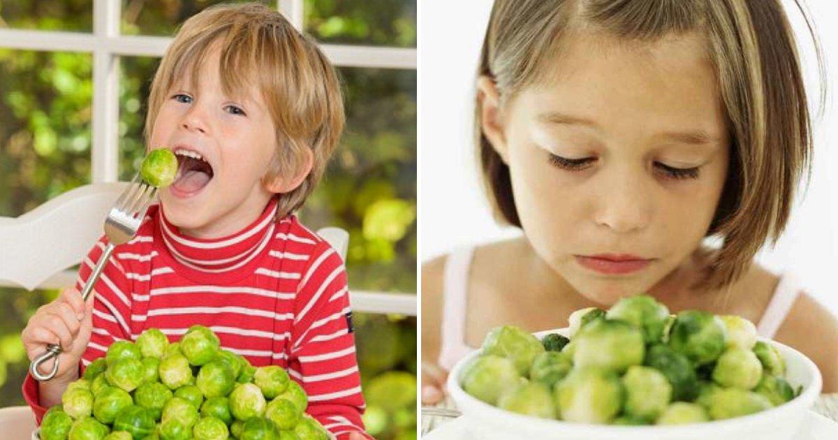 sprouts5.png?resize=300,169 - Les choux de Bruxelles pourraient réduire considérablement votre risque de cancer et traiter la maladie d'Alzheimer