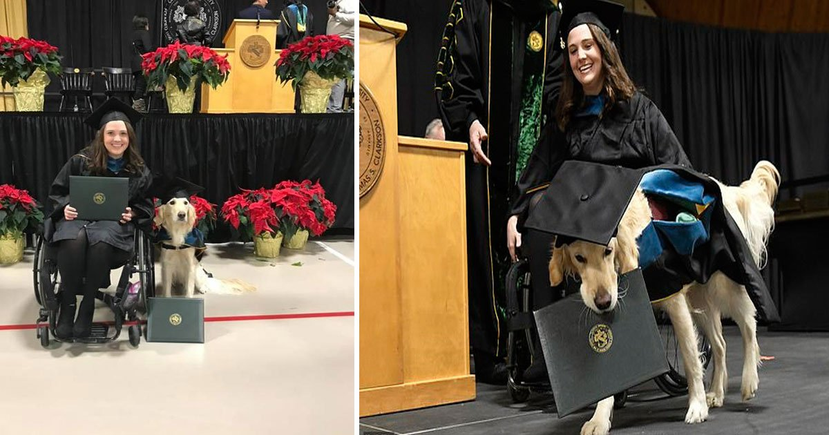 untitled 1 53.jpg?resize=300,169 - College Graduate's Service Dog, Griffin, Gets An Honorary Diploma For Helping Her Cope With Disability