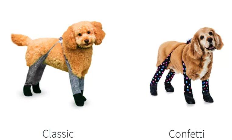 Dogs winter leggings