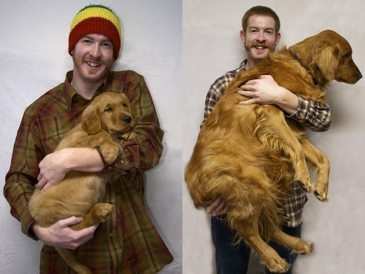 20 Touching Photos of Grown-Up Puppies That Prove Time Runs Way Too Fast