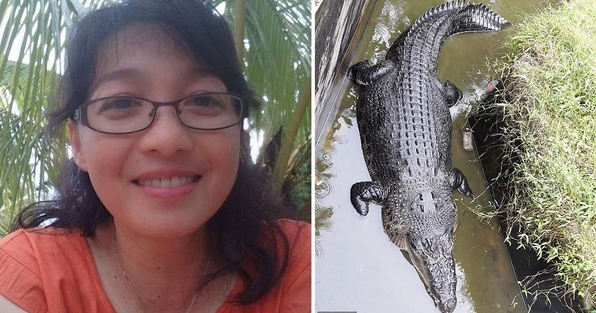 crocodile eats alive woman.jpg?resize=412,232 - Female Scientist Dragged By A Crocodile In Its Enclosure When She Was Feeding It At A Research Facility