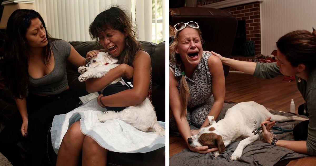 d2 10.png?resize=300,169 - Un photographe capture le chagrin des propriétaires d'animaux lorsqu'ils perdent leur animal pour toujours