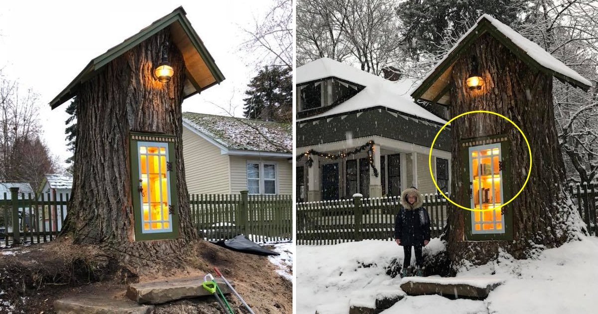 gdg.jpg?resize=1200,630 - 110-year-old Dead Tree Turned Into A Coziest Library And It's Every Book Lover's Dream To Go There And See It