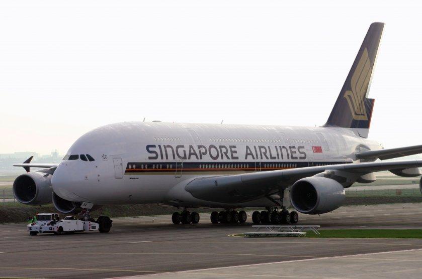 img 5c4393c282e69.png?resize=412,232 - Cet oiseau a semé la pagaille à bord d'un Airbus A380
