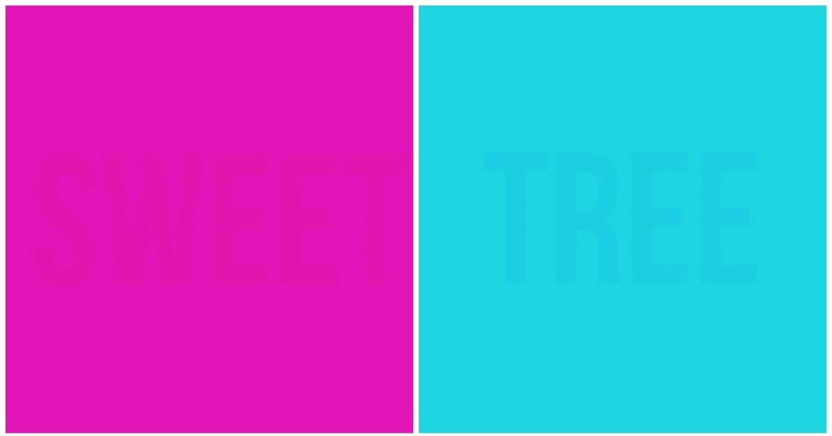 layout 2019 1 2.jpg?resize=1200,630 - 8개 글자 다 읽으면 당신은 완벽한 색감 지각 능력자