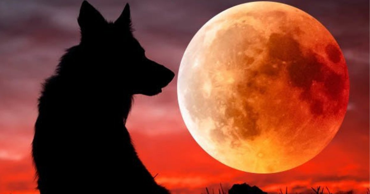 s4 8.png?resize=412,232 - The World Will Be Able To Witness A Brightly Red Tinted Sky This Weekend As There Will Be A 'Super Wolf Blood Moon'