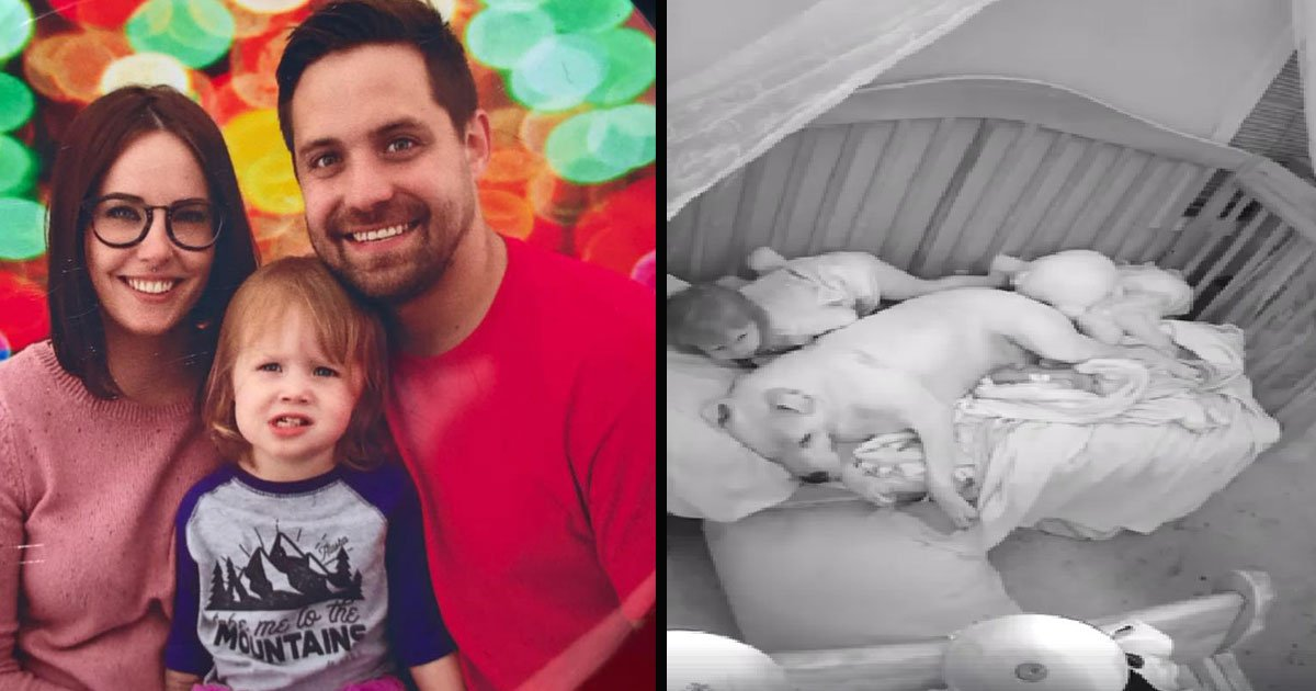 untitled 1 39.jpg?resize=1200,630 - Dad Lets 100 Lb Pit Bull Sleep In Crib With Baby - When They Saw The Footage They Immediately Shared It Online