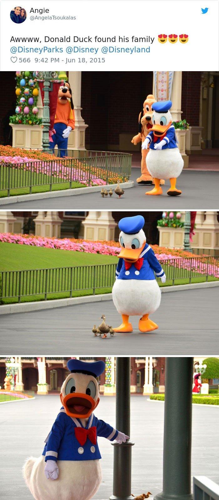 untitled 15 5c2cb62016591  700.jpg?resize=412,232 - 13 photos où les employés de Disney ont été les meilleurs