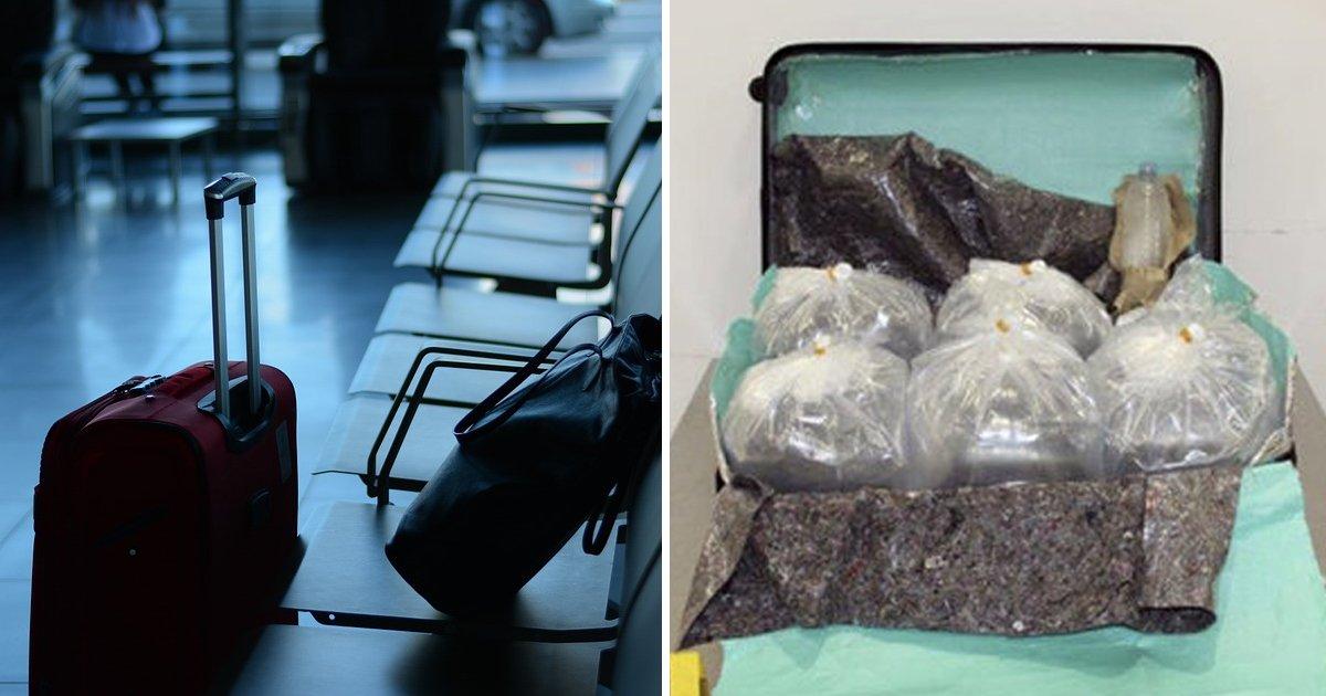 3 7.jpg?resize=412,232 - 가방에 장어 '25만' 마리 밀반입하려다 공항에서 체포된 한국 남성