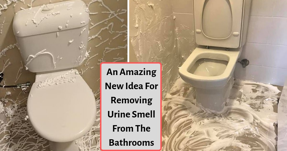 d2 13.png?resize=1200,630 - Australian Mothers Are Lathering The Bathroom Floors With This To Get Rid of Unpleasant Smell