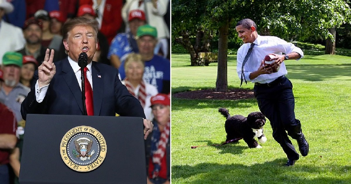 d4.jpg?resize=412,232 - Trump Answers Why He Doesn't Have A Dog At The White House With A Reason That Hits Obama