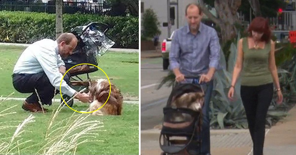 dsfsfd.jpg?resize=1200,630 - Viral Story Of Texas Man Kneeling Next To Dog Is The Only Thing You Need To Restore Your Faith In Humanity