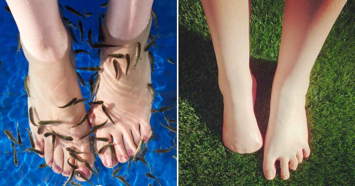 fishspa.png?resize=1200,630 - Une femme perd ses cinq orteils après être allée un Fish Spa