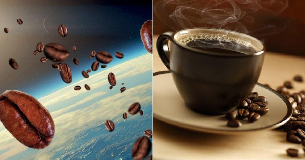 img 5c65439331006.png?resize=1200,630 - '우주'에서 떨어뜨려 대기권 재진입 고열로 볶은 '커피'의 후덜덜한 가격 클라스