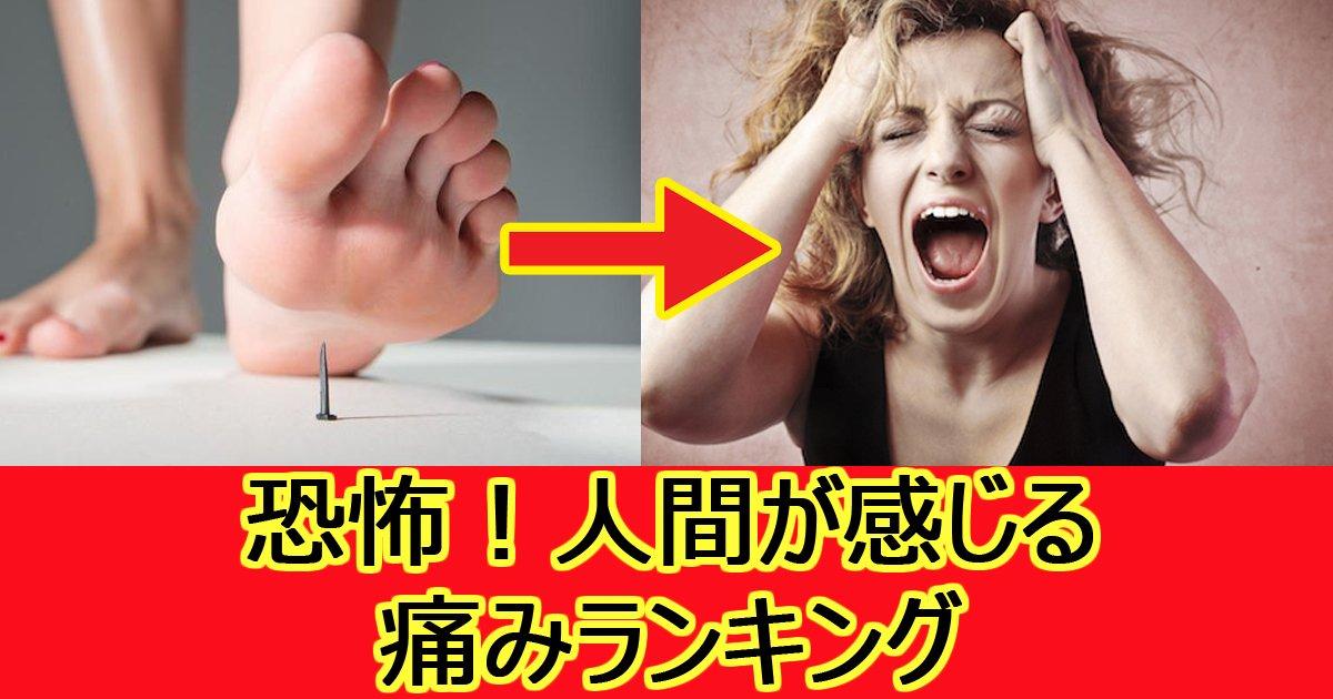 jw surugi 16.jpg?resize=1200,630 - 【衝撃】 あなたはどこまで耐えられる?人間の痛みランキング