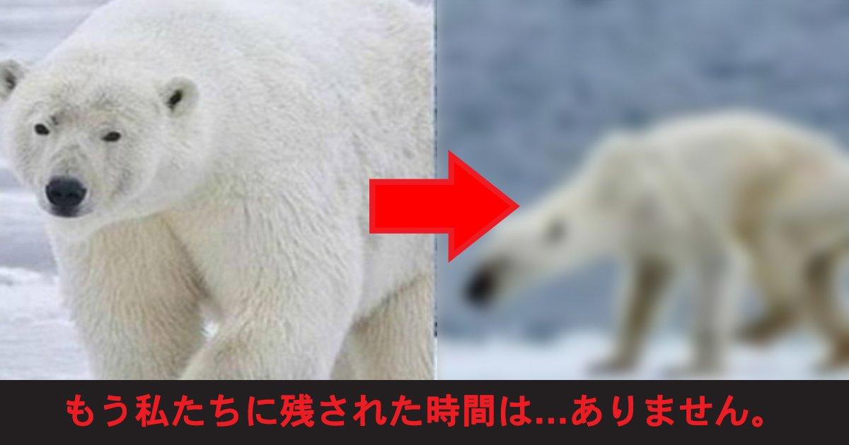kankyo.jpg?resize=1200,630 - 【悲劇】崩壊していく地球の写真特集…もう私たちに残された時間は…ない…!?