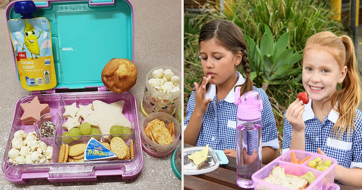 untitled 1 11.jpg?resize=1200,630 - A Mother Has Taken To Facebook To Ask Whether Her Child's Lunch Is Too Large-After Being Scolded By Her Daughter's Teacher