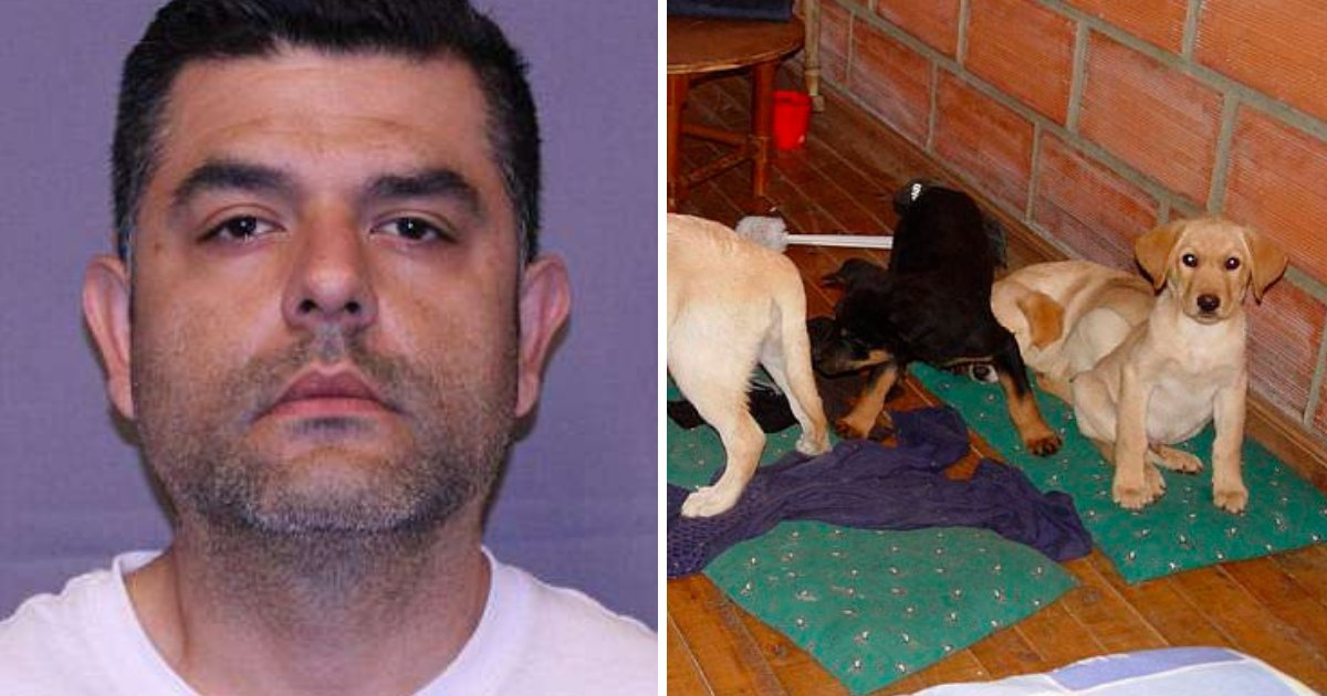 vet.png?resize=1200,630 - Veterinarian Arrested For Smuggling Drugs Into the U.S. By Using Live Dogs