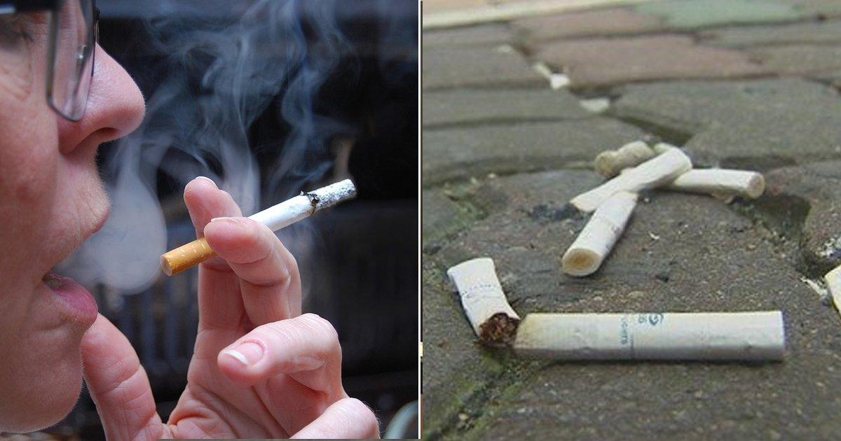 "8 12.jpg?resize=412,232 - ""꽁초는 담배회사가 수거해야""... 흡연자 87%가 찬성했다"