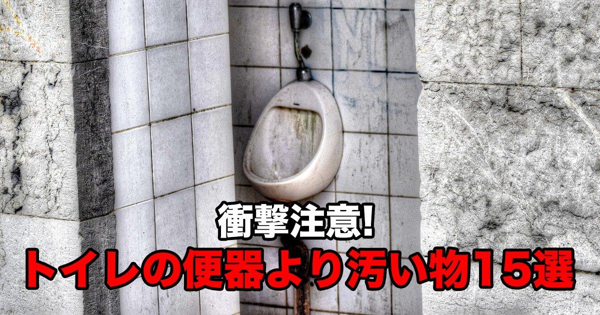 88 89.jpg?resize=1200,630 - 衝撃注意!トイレの便器より汚い物15選