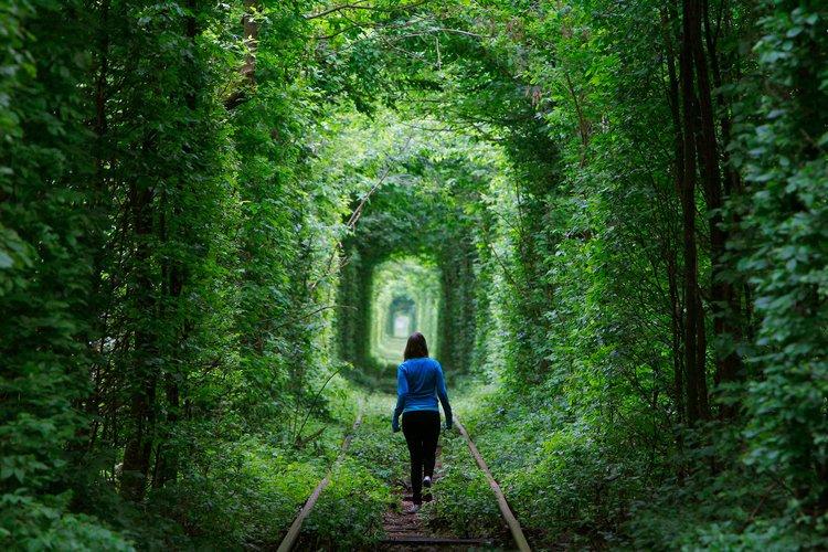 우크라이나 러브 터널에 대한 이미지 검색결과