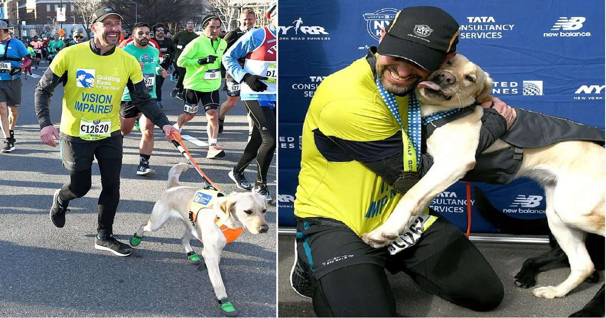 b5.png?resize=412,232 - Blind Runner Made History By Completing NYC Half Marathon With His Three Guide Dogs