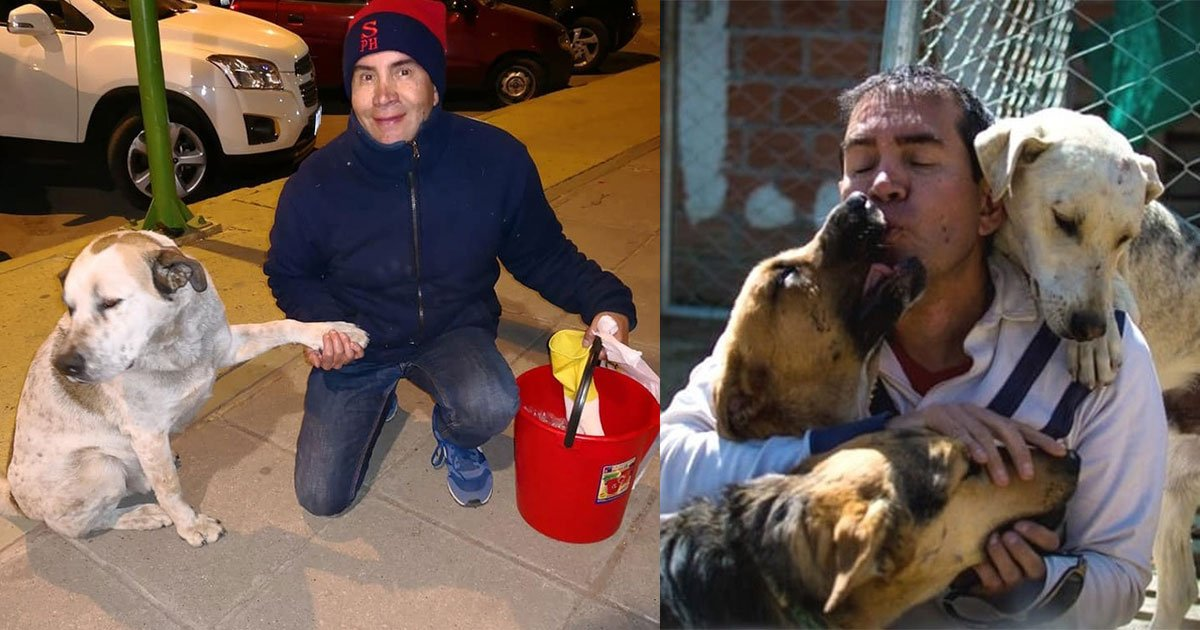 bolivian man quits his job to feed food to hungry dogs in his city every day.jpg?resize=412,232 - Bolivian Man Quits His Job To Feed Hungry Dogs In His City Every Day