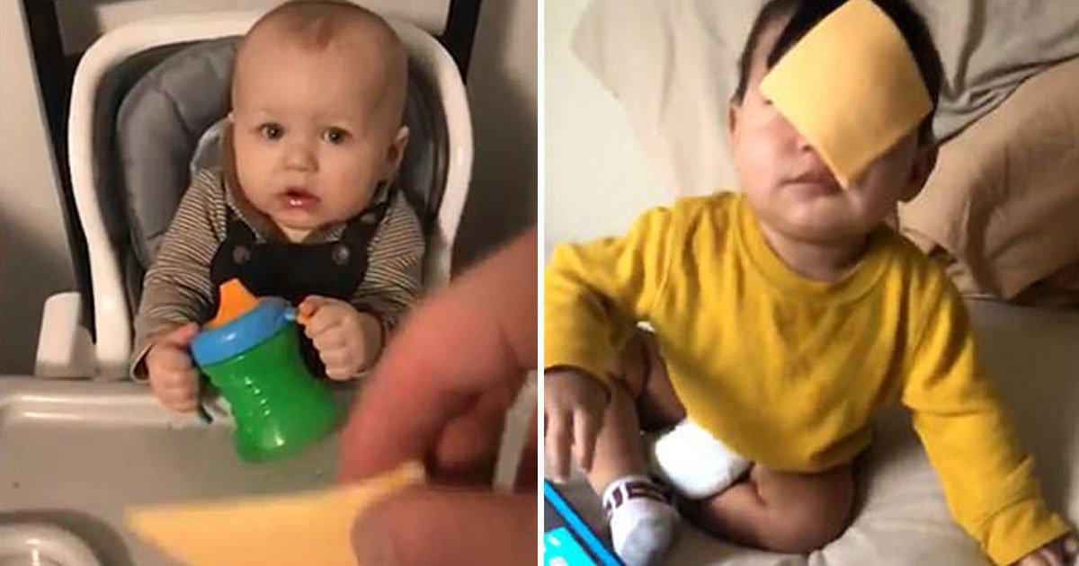 cheesed challenge.jpg?resize=1200,630 - Les parents participent à un défi Internet où ils jettent du fromage sur le visage de leurs enfants
