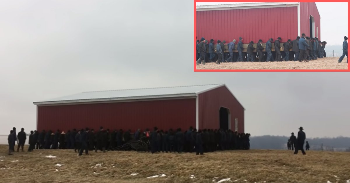 d2 10.png?resize=1200,630 - More Than 250 Amish Men Lift a Barn to Move it to a New Spot at the Farm