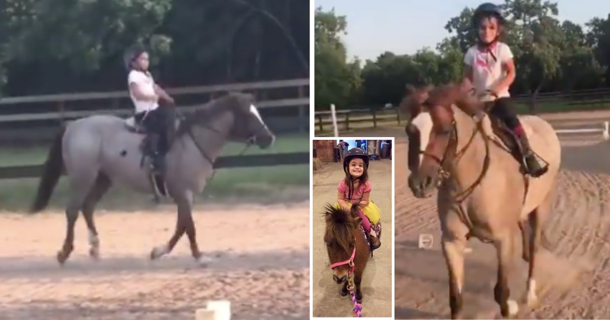 d5 16.png?resize=1200,630 - A 5-Year-Old Baby Girl Soothes The White Horse in a Heartwarming Video