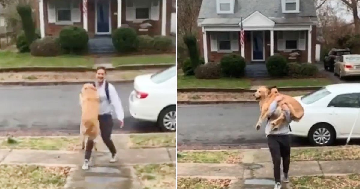 dog owner.jpg?resize=412,232 - Adorable Dog Couldn't Contain His Excitement Seeing His Owner Who Came Back Home From Work