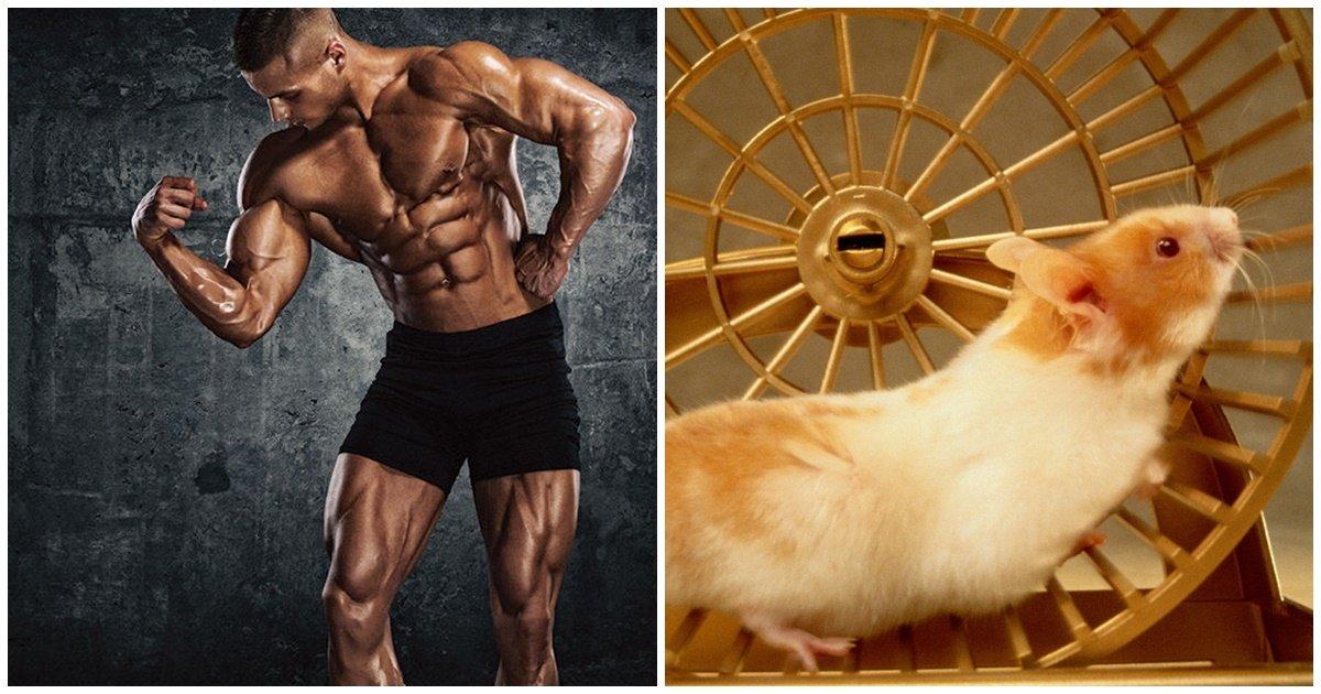 ec9ab4eb8f99eab7bcec9ca1.jpg?resize=412,232 - 근육 생성 막는 안 좋은 5가지 운동 습관
