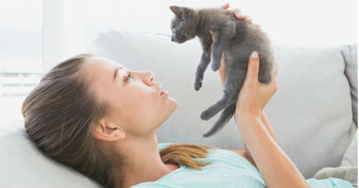 eca791ec82ac.jpg?resize=1200,630 - 세계 각국에서 '고양이 집사'를 칭하는 '놀라운' 말들