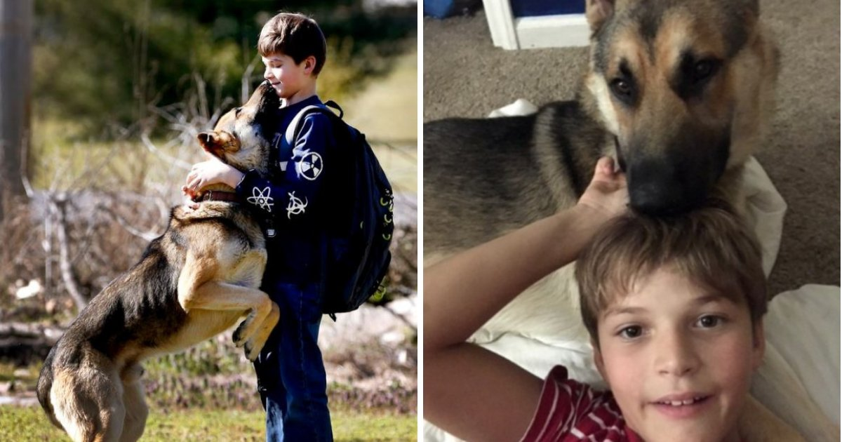 goblin4.png?resize=1200,630 - 10-Year-Old Boy To The Moon After Stolen Dog Return